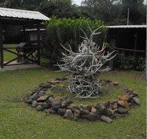 La Chasse en Nouvelle-Calédonie