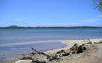 Chasse sur îlots : inoubliable