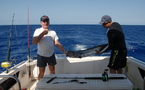 Safaris pêche au gros au départ de Nouméa