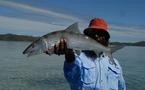 Laurent, guide de pêche pour New Caledonia Fishing Safaris